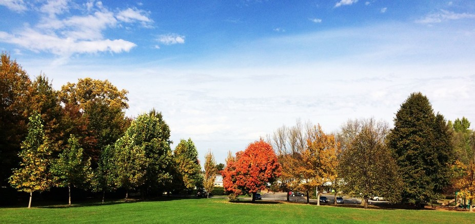 the beautiful landscape of the Vanderveer park was to pretty to not capture