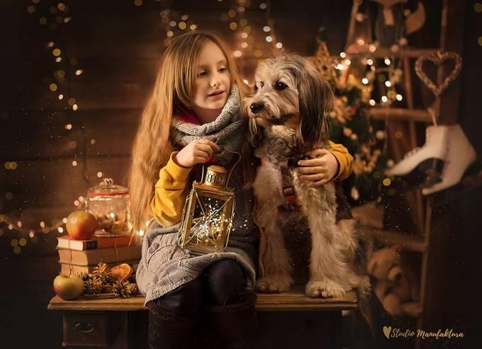 Happy Holidays Photo Contest 2016 Winners