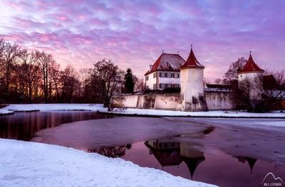 Winter night purple night