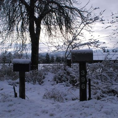 Home Sweet Home on a fav farm off Allsbrook road in Parksville, BC on Vancouver Island - 2 mail boxes in snow off   - Dec 12, 2016