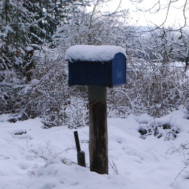 One blue mailbox in snow  off Allsbrook Rd, Parksville, BC on Vancouver Island -  Dec 12, 2016