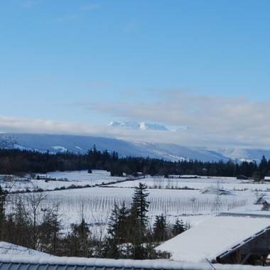 Across the Nanoose valley to Arrowsmith Mountain range on Van Isl Dec 2016