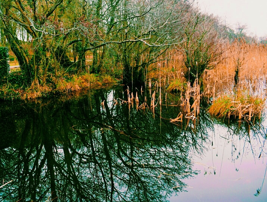 Went for a walk and realised that everything has a reflection it just depends on which way the li...