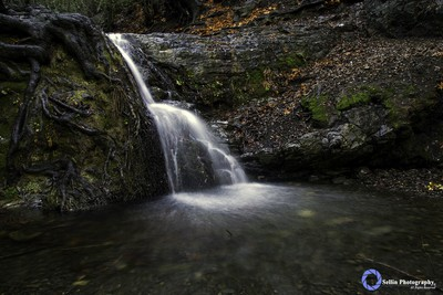"""Water Flows Through It"""