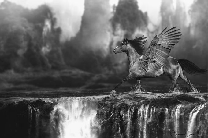 41+ Stunning Photos Edited In Surreal Ways