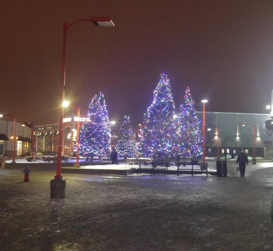 Christmas tree in Kanata, Ontario Canada