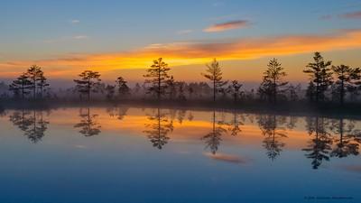 Põhja-Kõrvemaa Nature Reserve. Estonia.
