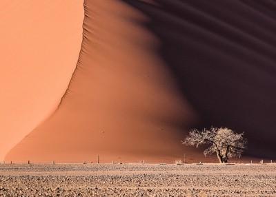 Dune 45 Namibia Sand Desert