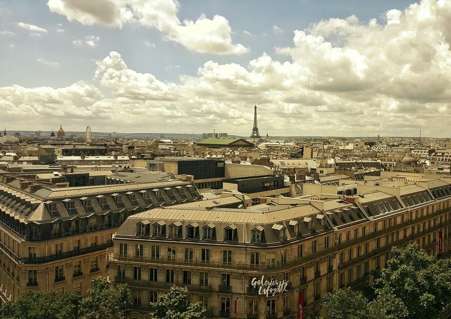 Captured this beautiful scene in Paris, France in June, 2016.