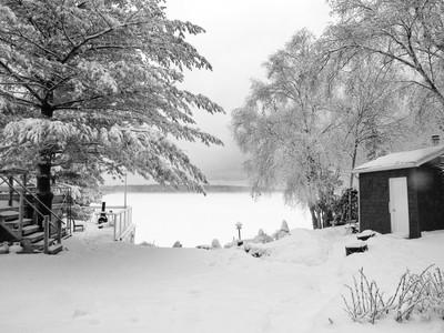 Snowing (IMG_9814)