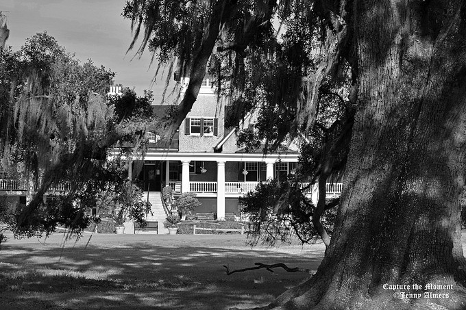 Magnolia Main House in Black and White