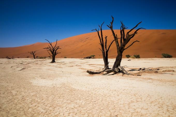 Deadvlei by evimulder - Unforgettable Landscapes Photo Contest by Zenfolio