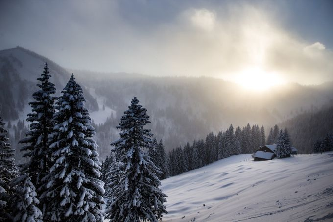 Winter by yannicklange - The First Light Photo Contest