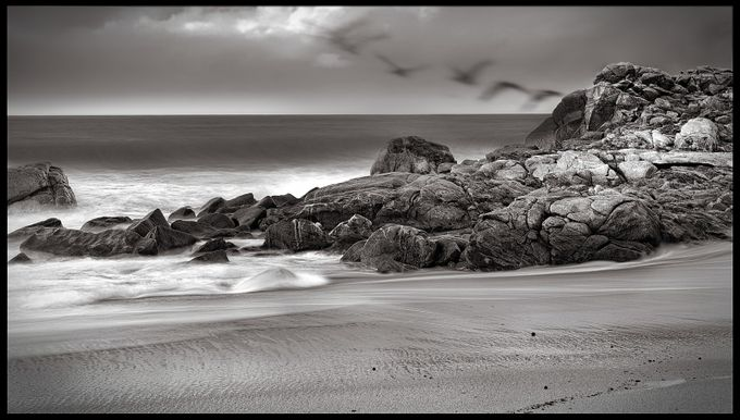 One evening on the beach when I was trying new filters, flock of Pelicans flew in... Happy that they did:-)