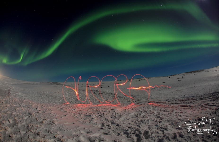 Drove two hours north of Reykjavik into pitch black skies when these amazing lights came on to li...