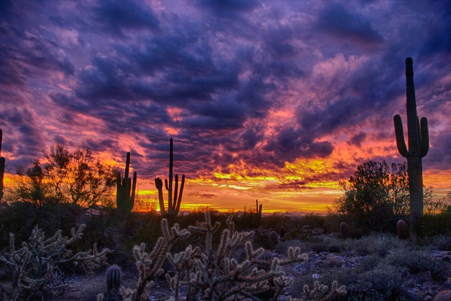 Taken on Scottsdale, AZ on the longest sunset day in years that lasted over 30 minutes.