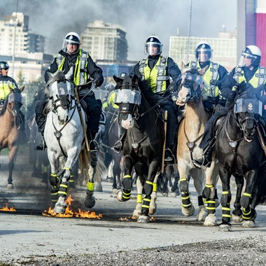 Riot Horses Learning to Confront Fire