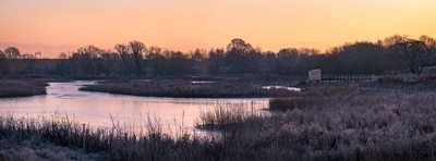 First Light at the Nature Reserve
