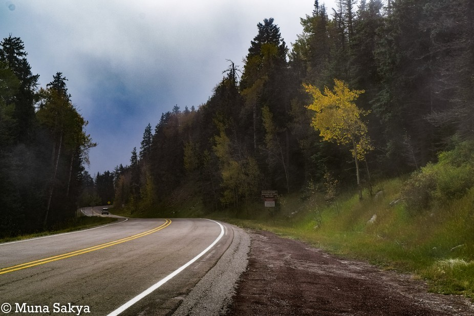 I was driving up to the top of the mountain and the fog was slowly lifting. So I pulled over to t...