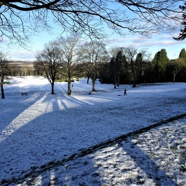 Visit to my local Park after snowfall on a lovely sunny winter day glad to see plenty people enjoying sledging
