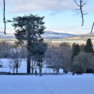 Loved all the activity and sledging at my local park after the recent snow and enjoying the beautiful scenery