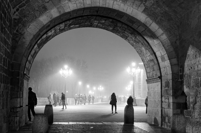 Winter, a world of one color by GEFAELL - A Walk In The Mist Photo Contest