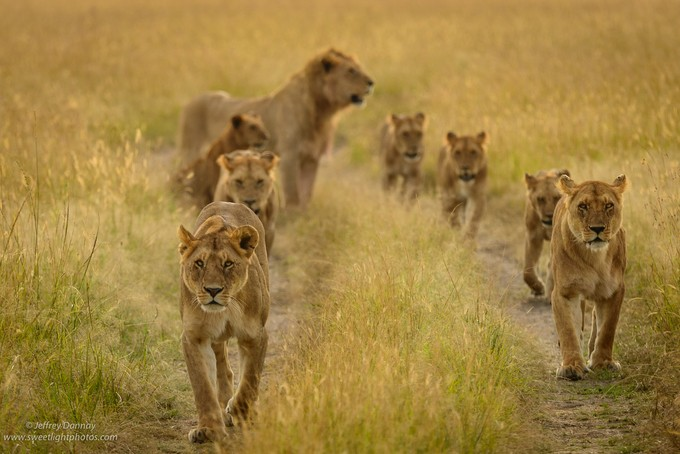 The Hunters by jdannay - Explore Africa Photo Contest