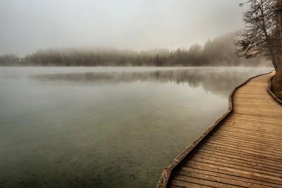 Foggy Lakeside of Lake Bled