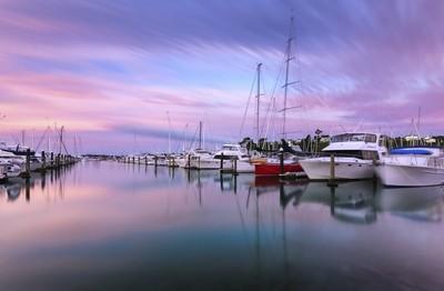Purple Sail