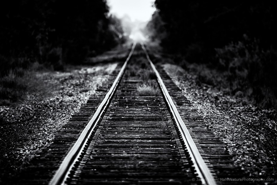 Railroad tracks disappearing into fog.  When I saw this scene it reminded me of a lyric from the ...