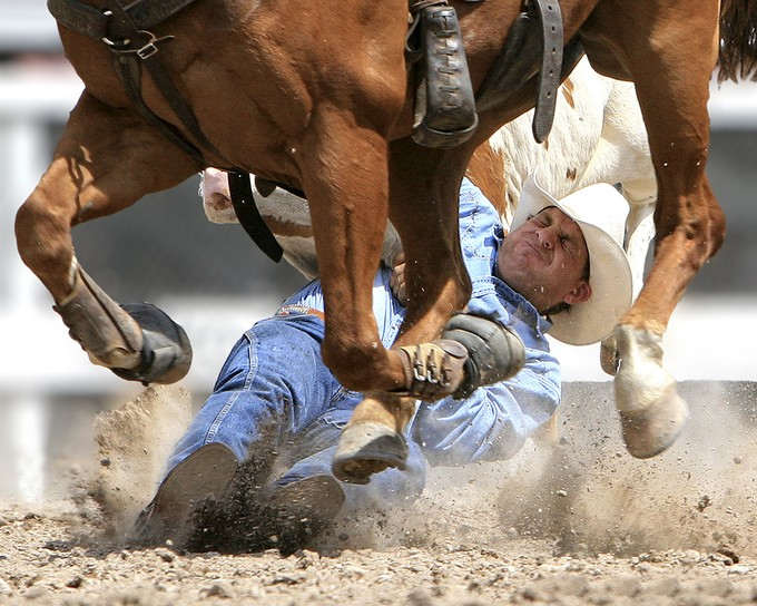 Steer Wrestling by tonybruguiere - People At Work Photo Contest
