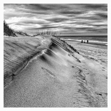 Dune Closeup 1 BW