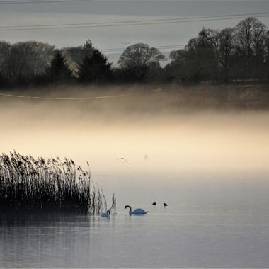 January late afternoon and was lucky to noticed the mist rolling in over my local Loch creating an eerie quiet mood