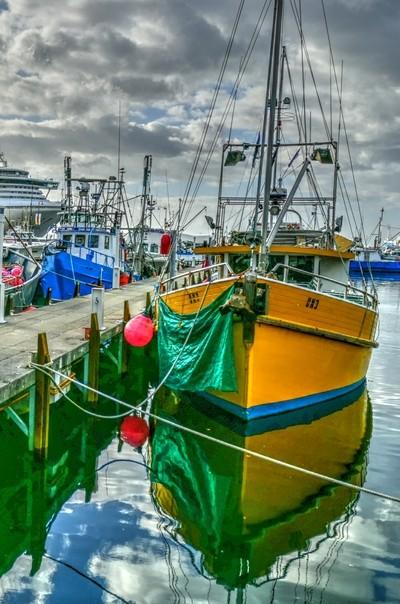 Fishing Boats Hobart