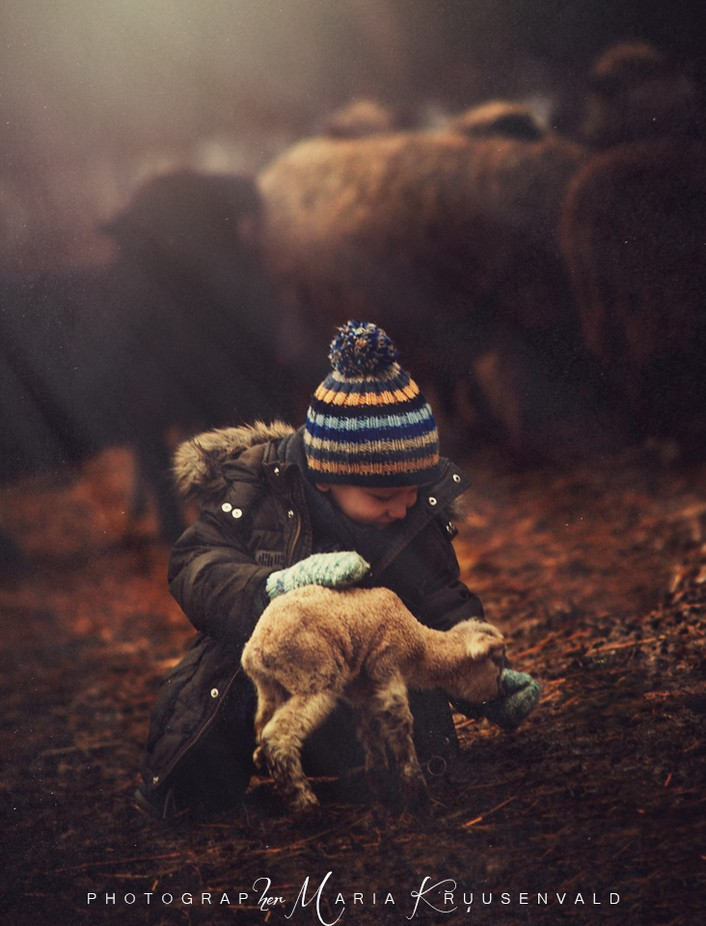 Farm life by MariaKruusenvald - Kids And Pets Photo Contest