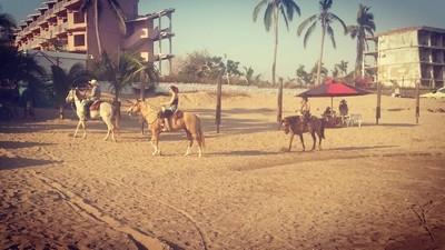 Horseback at the beach