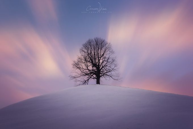 hügälibaum by CmoonView - A Lonely Tree Photo Contest