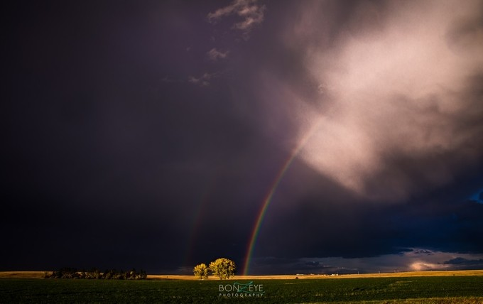2P0A5594 by BonZeye - Rainbows Overhead Photo Contest