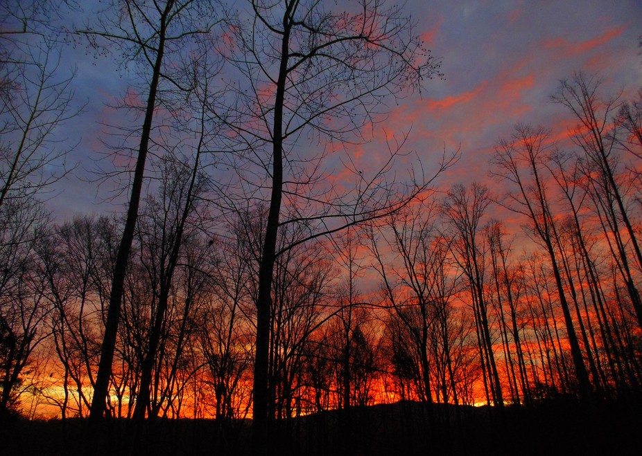 A spectacular sunrise greeted us this morning. To start the day this way....well, it just doesn&a...