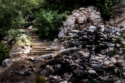 Stairway to the Mt Lemmon trail