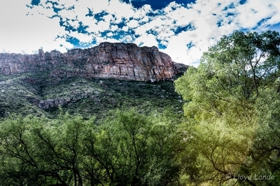 cliffs of sabino canyon