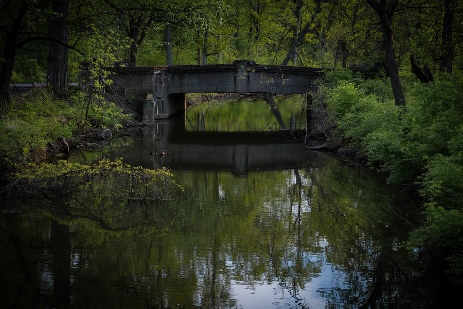 Hidden bridge on Belle Isle; Detroit, MI