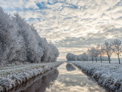 On a winters morning