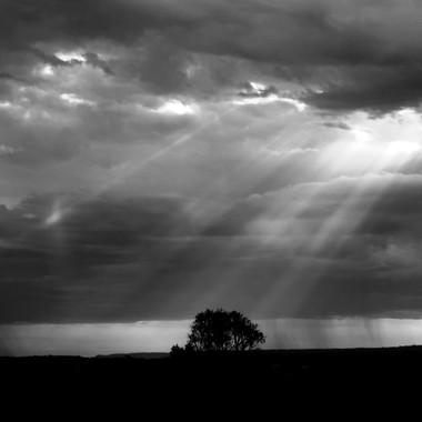 Peeping Through the Clouds (B & W) -  Mulgoa