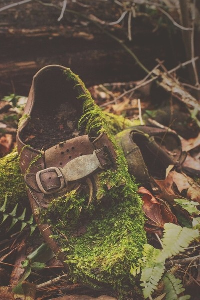 Mother Nature's Shoes