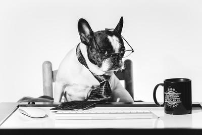"""Work Is Ruff"""