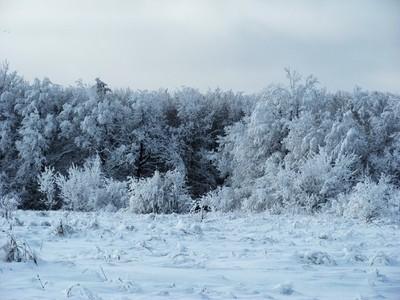 Winter comes, Winter road