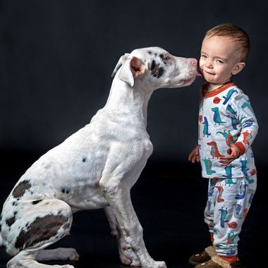 These two will grow up together! Krypto is a 6 month Great Dane puppy and Hayden is an 18 month boy!