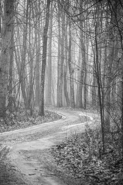 long path away