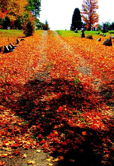 autumn at pine grove cemetery